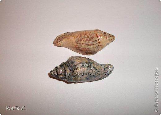 Поделка изделие магнитики Дары моря или испытание самодельных молдов Гипс фото 3