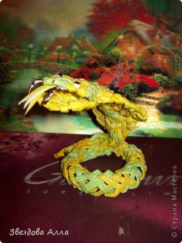Вот такая змейка по МК Пустельги .Спасибо ей за интересные МК.Не очень хорошо получилось, но как говорится первый блин комом. фото 1