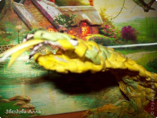 Вот такая змейка по МК Пустельги .Спасибо ей за интересные МК.Не очень хорошо получилось, но как говорится первый блин комом. фото 3