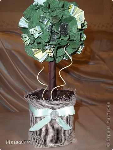 Для семьи наших друзей сделала такие деревца .Папе - денежное ,маме - кофейное ,а их сыну сладкая елочка) фото 5