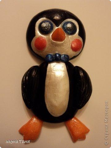 Пингвин фото 2