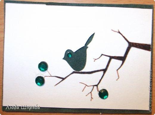 Основа - бархатный картон (кроме 5 и 6 - просто картон), веточка - нарисована, птичка вырезана  (техника вытынанка), цветы - полубусины фото 5