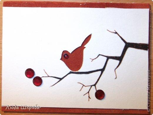 Основа - бархатный картон (кроме 5 и 6 - просто картон), веточка - нарисована, птичка вырезана  (техника вытынанка), цветы - полубусины фото 8