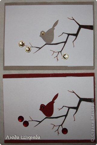 Основа - бархатный картон (кроме 5 и 6 - просто картон), веточка - нарисована, птичка вырезана  (техника вытынанка), цветы - полубусины фото 3
