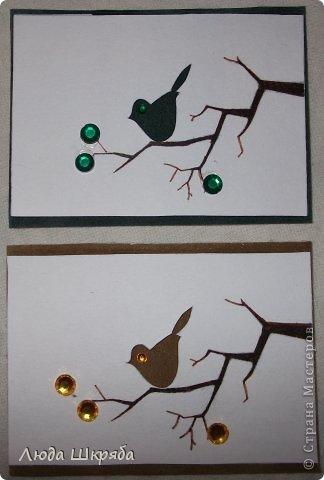 Основа - бархатный картон (кроме 5 и 6 - просто картон), веточка - нарисована, птичка вырезана  (техника вытынанка), цветы - полубусины фото 2