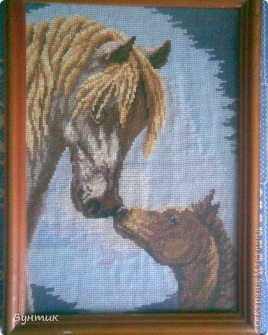 последняя вышивка.очень люблю лошадей....(30на40) фото 11