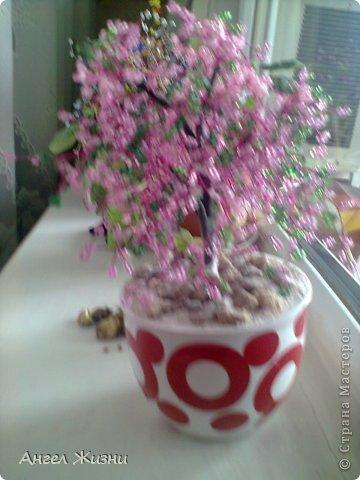 Дерево (Китайская Вишня) фото 3