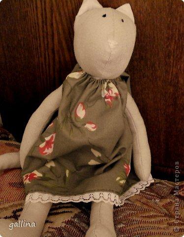 Кошка-тильда. Пошита из...ой, были такие летние брючки... но малы... а цвет такой подходящий... А платье из бязи, кофта из флиса. фото 3