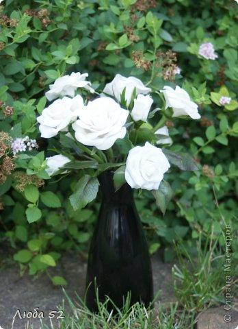 Белые розы!  фото 1