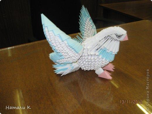 Голубь оригами своими руками фото 451