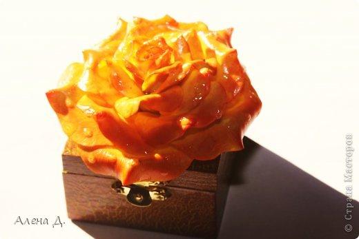 Поделка изделие День рождения Лепка Шкатулка розацея Фарфор холодный фото 2.