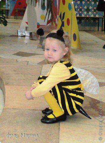 Отважный пират! Этот костюм шился в 2010 году для сына знакомой на садиковский утренник. Позднее костюм был доработан и дополнен новыми деталями. Думаю это уже окончательный вариант. фото 34