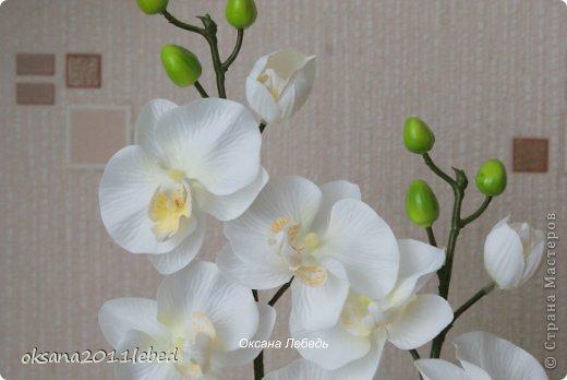 Всем привет, мои дорогие!!! Поздравляю с Наступившим Новым годом и Рождеством!!! Праздничные хлопоты позади и руки сами потянулись творить и вытворять!!!! Сложились у меня две композиции с орхидеями, буквально на одном дыхании..... фото 5