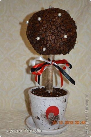 мой  старший котенок пошел в 1 класс ))))))))) решили подарить такое деревце на день учителя нашей первой учительнице фото 5