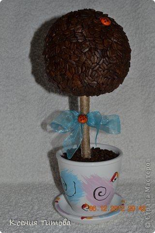 мой  старший котенок пошел в 1 класс ))))))))) решили подарить такое деревце на день учителя нашей первой учительнице фото 6