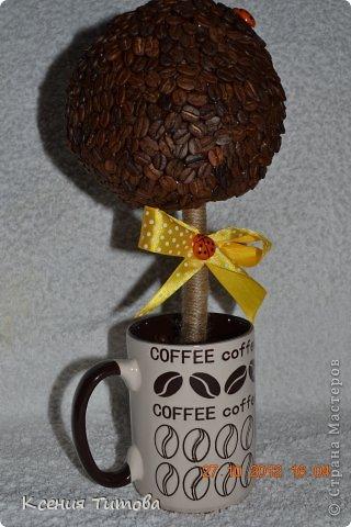 мой  старший котенок пошел в 1 класс ))))))))) решили подарить такое деревце на день учителя нашей первой учительнице фото 3