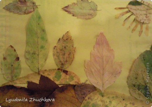 Картина панно рисунок Праздник осени Аппликация флористика Осенний пейзаж Материал природный фото 2