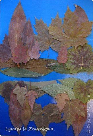 Картина панно рисунок Праздник осени Аппликация флористика Осенний пейзаж Материал природный фото 15