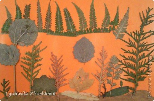 Картина панно рисунок Праздник осени Аппликация флористика Осенний пейзаж Материал природный фото 5