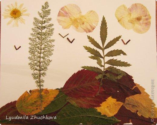 Одна из тем наших занятий по флористике - это осенний пейзаж, осеннее настроение в природе. Эти работы собраны за несколько лет занятий с детьми. Возраст воспитанников- от 5 лет и старше. фото 10
