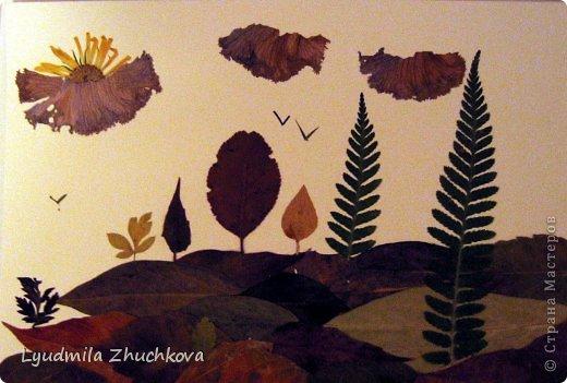 Картина панно рисунок Праздник осени Аппликация флористика Осенний пейзаж Материал природный фото 13