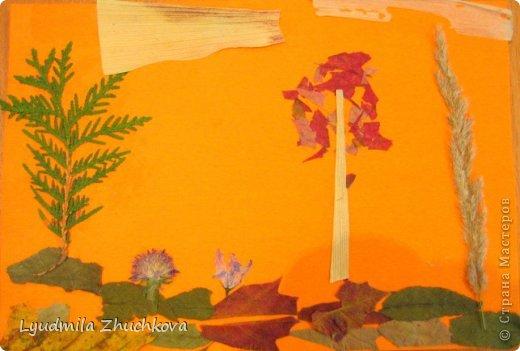 Картина панно рисунок Праздник осени Аппликация флористика Осенний пейзаж Материал природный фото 7