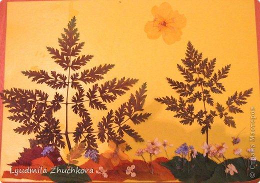 Картина панно рисунок Праздник осени Аппликация флористика Осенний пейзаж Материал природный фото 8