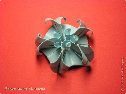 Я уже показывала эту кусудаму. Теперь предлагаю вам МК этих синих крученых цветов. В основе - кусудама Stern var., автор Paolo Bascetta, 30 модулей, размер бумаги 8,5 х 8,5 см Для цветов необходимо 60 модулей, у меня размер бумаги 7,0 х 7,0 см, в итоге кусудама получается 12,5 см в диаметре.  Автор модульных цветов - Валентина Минаева (Valentina Minayeva) фото 33