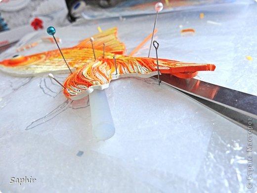 Золотая рыбка.  фото 11