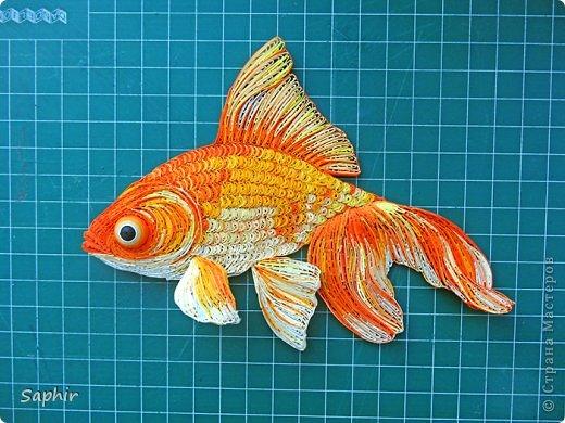 Золотая рыбка.  фото 12