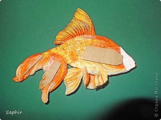 Золотая рыбка.  фото 14