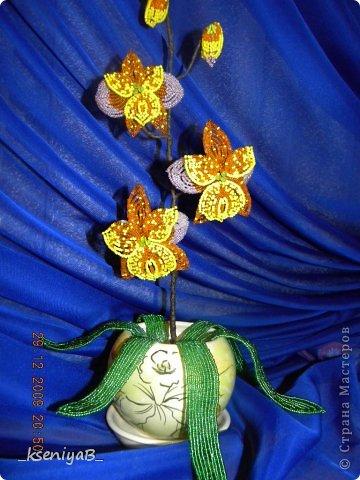Орхидея оранжевая.  Подарила сотруднице.  Поделка, изделие.  Хорошее настроение. kseniya-mama.  Бисер.