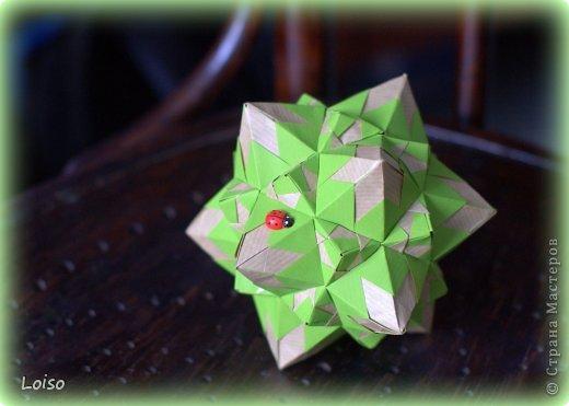 Ну вот, успела... интернет только что появился, ура!!! :)))))))))))))) На моем Сигнуме поселилась бабочка-коробочка фото 2