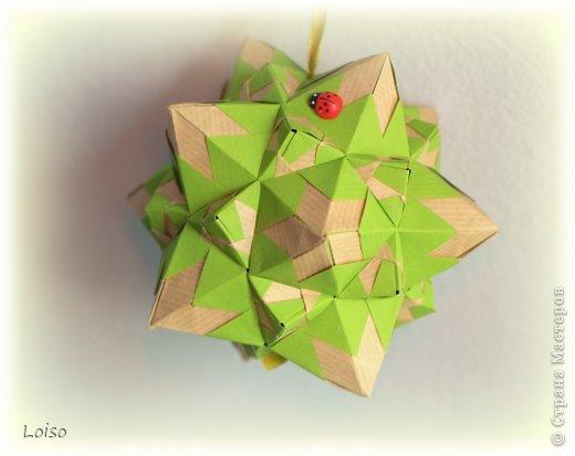 Ну вот, успела... интернет только что появился, ура!!! :)))))))))))))) На моем Сигнуме поселилась бабочка-коробочка фото 1
