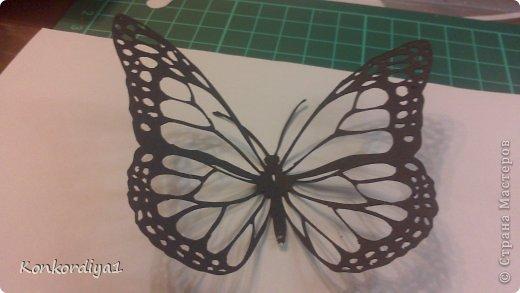 Поделка изделие Вырезание Бабочки Бумага фото 1