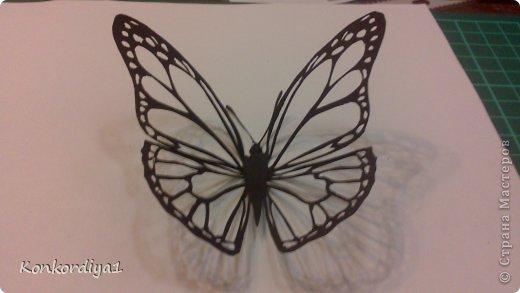 Поделка изделие Вырезание Бабочки Бумага фото 5