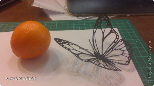 Поделка изделие Вырезание Бабочки Бумага фото 7