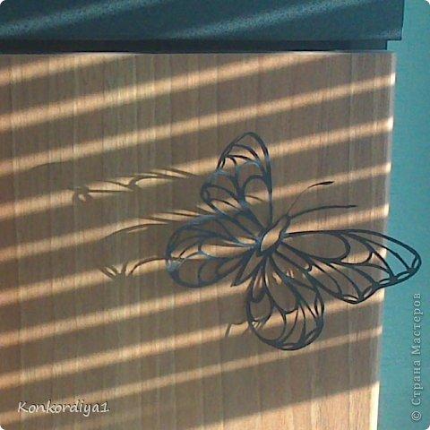 Поделка изделие Вырезание Бабочки Бумага фото 4