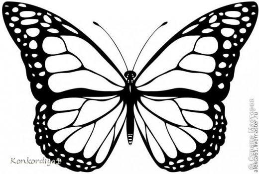 Поделка изделие Вырезание Бабочки Бумага фото 8
