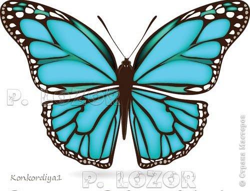 Поделка изделие Вырезание Бабочки Бумага фото 9
