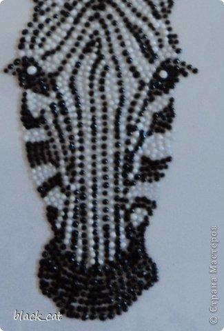 Рисунок контурными красками Марабу на стекле  фото 3