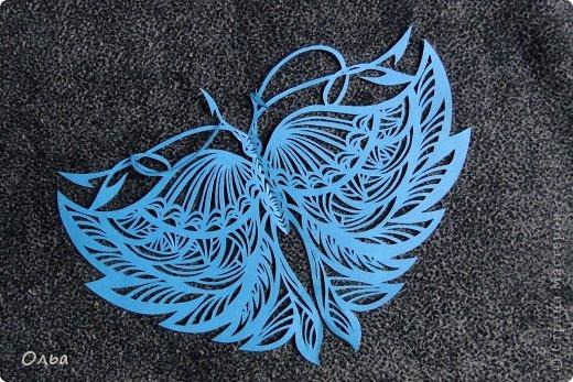 Поделка изделие Вырезание Цветные бабочки Бумага фото 8