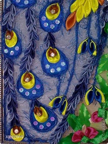 Картина панно рисунок Цумами Канзаши Павлин Канзаши Ленты фото 4.
