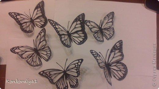 Поделка изделие Вырезание Бабочки Бумага фото 10