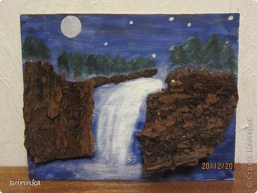 Картины из коры деревьев