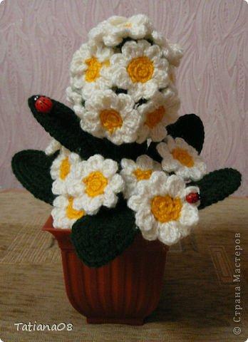 Поделка изделие 8 марта Вязание крючком Цветы к празднику Пряжа
