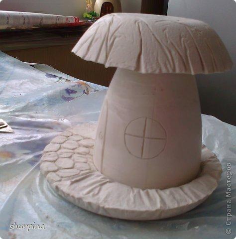 Сказочный гриб-домик фото 18