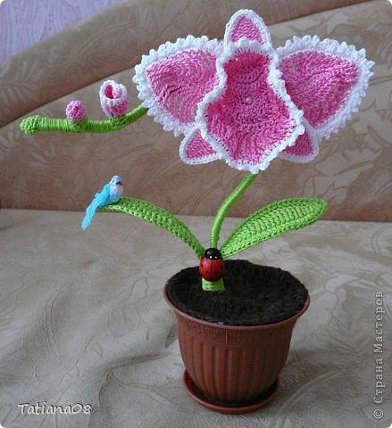 Вязание крючком Цветы к