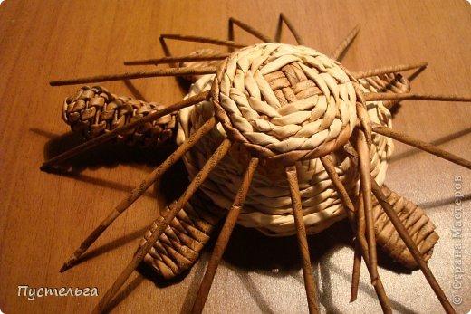 Поделка изделие Плетение Черепашка и снегирь Бумага газетная фото 9