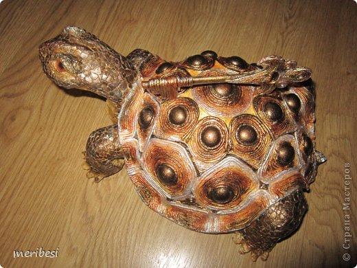 Поделки своими руками черепаха
